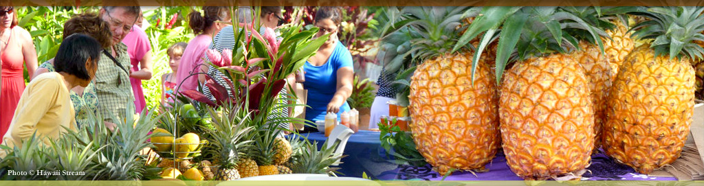 Plantation Cooking at Kauai Culinary Market
